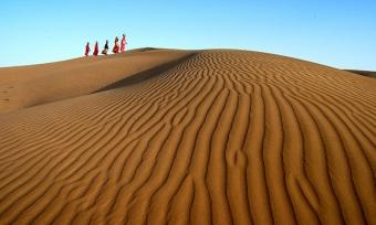 desert-senior-citizen-tour